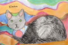 Simba-the-Cat