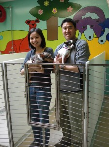 yvonne and phil puppy parlor