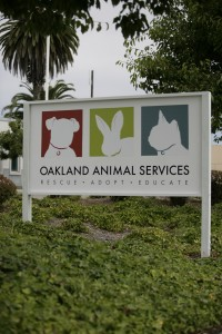 OAS sign