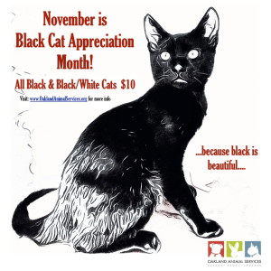 Black Cat Appreciation Month-page-001