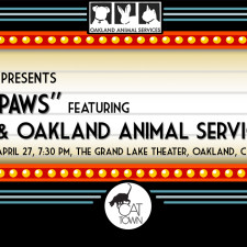 Join us for a special screening of Shelter Me: Hearts & Paws