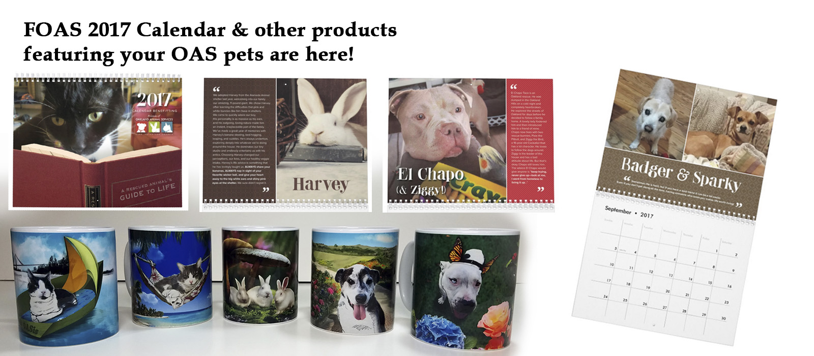 FOAS Zazzle products featuring your OAS pets!