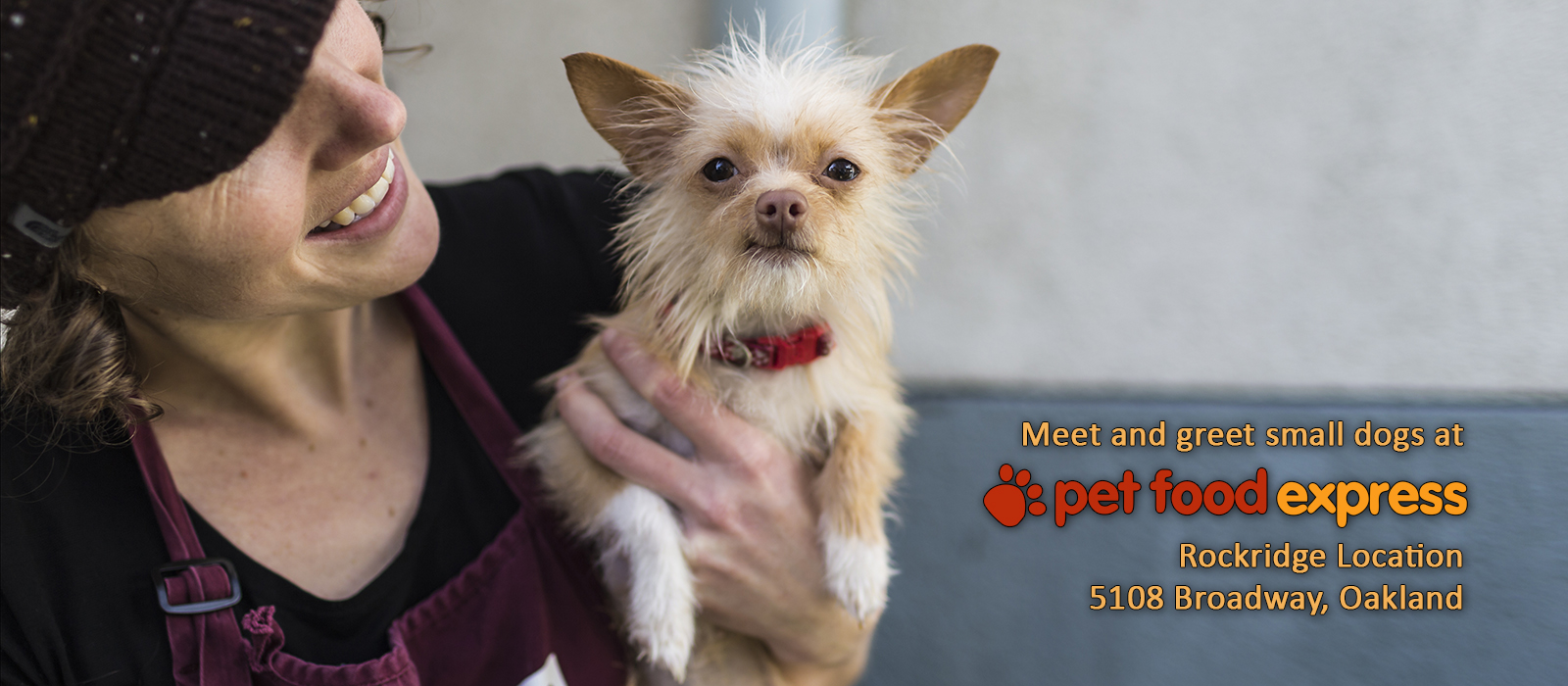 Meet small dogs at Pet Food Express Rockridge
