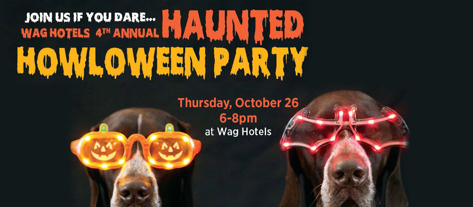 Fourth Annual Haunted Howloween Wag Hotels Oakland