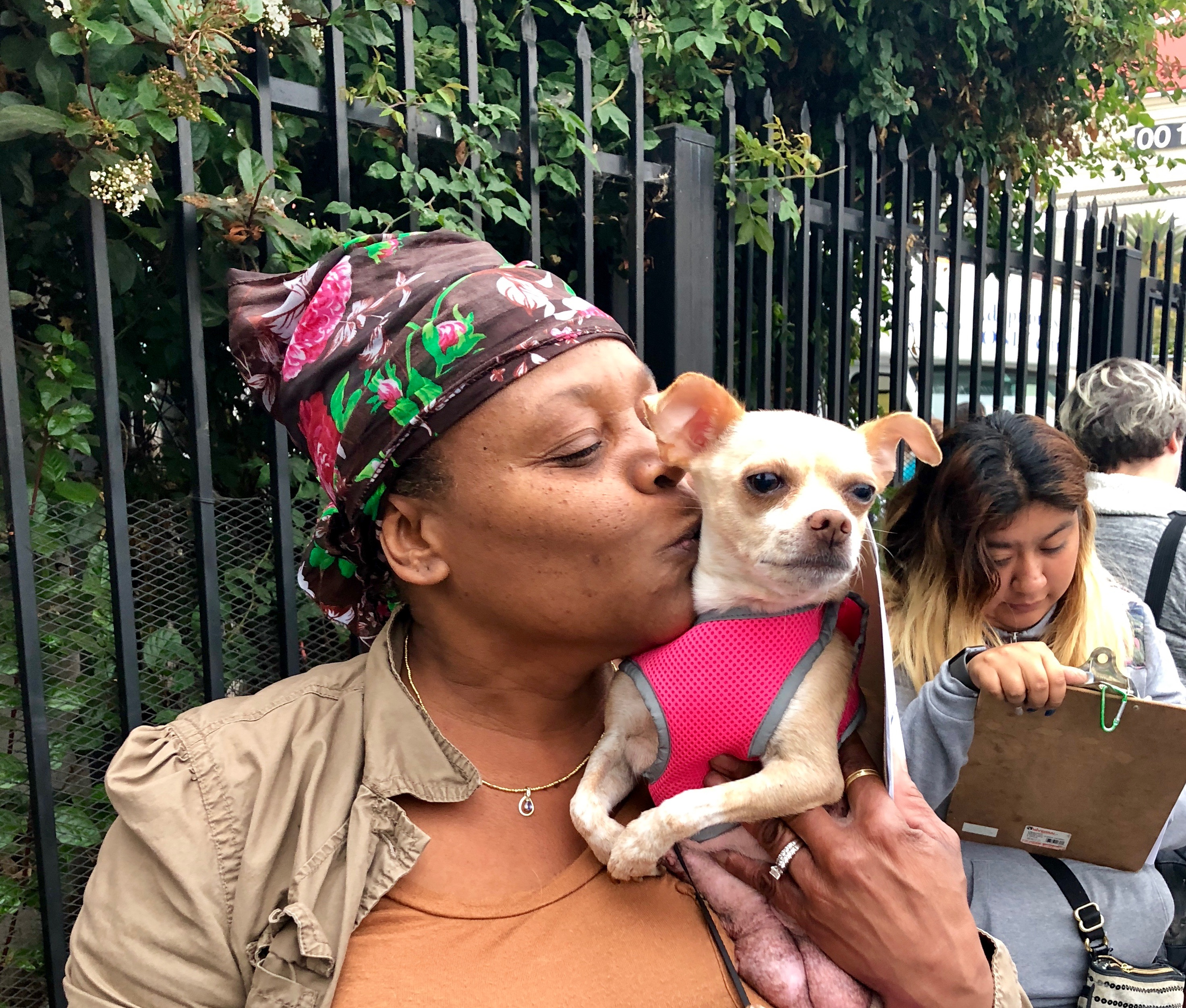 Oakland Animal Services Oaklands Only Open Admissions Shelter