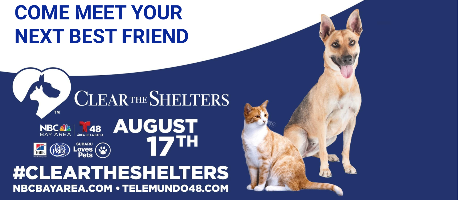 Come clear the shelter!