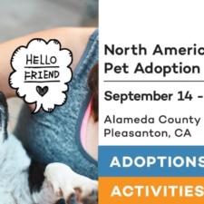 Bay Area Pet Fair 2019