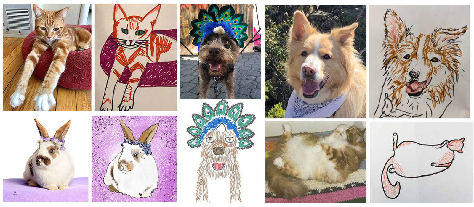 Get a unique portrait of your pet and raise funds for the shelter