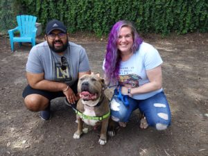 Dog with adopters