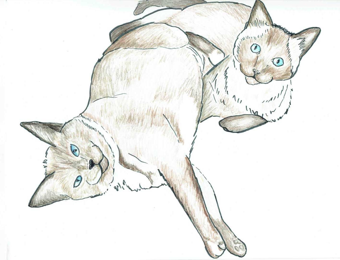 2-Cats-Art