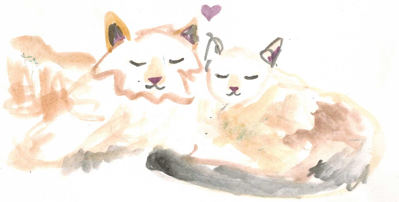 AS-Cats-Art