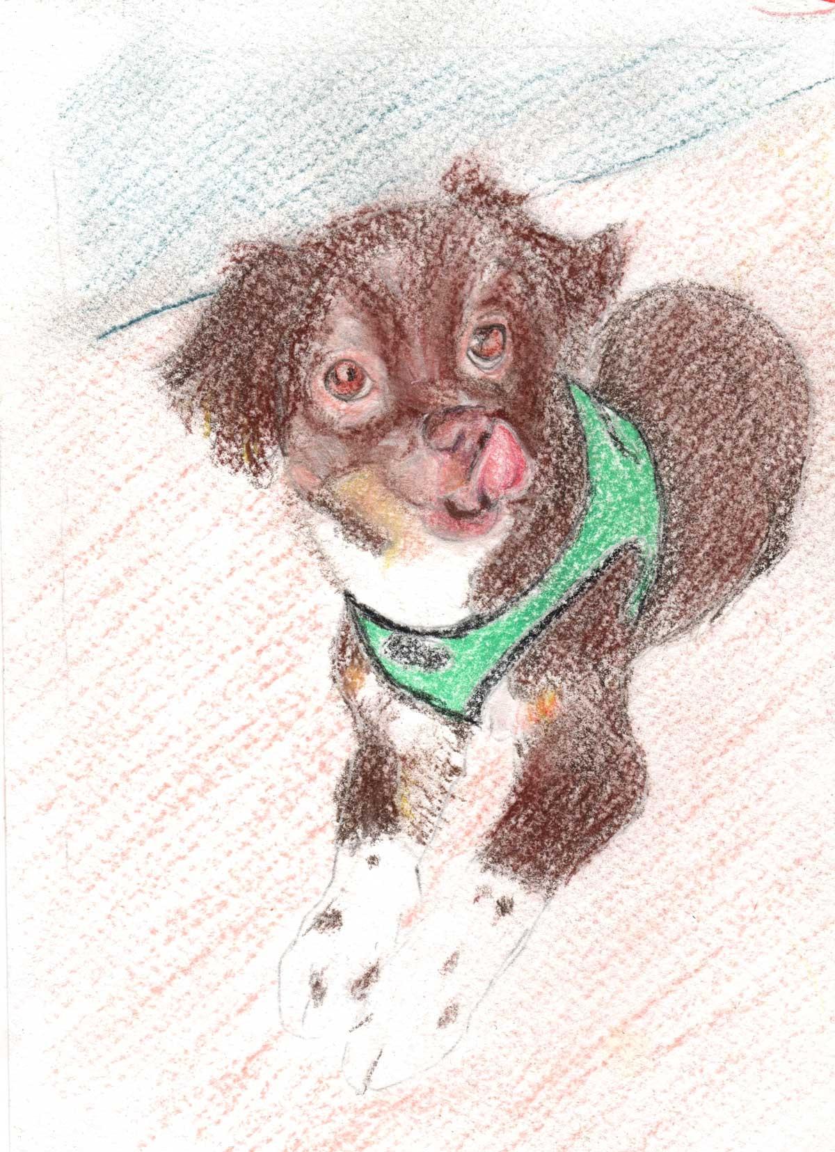 Brown-Dog-Art