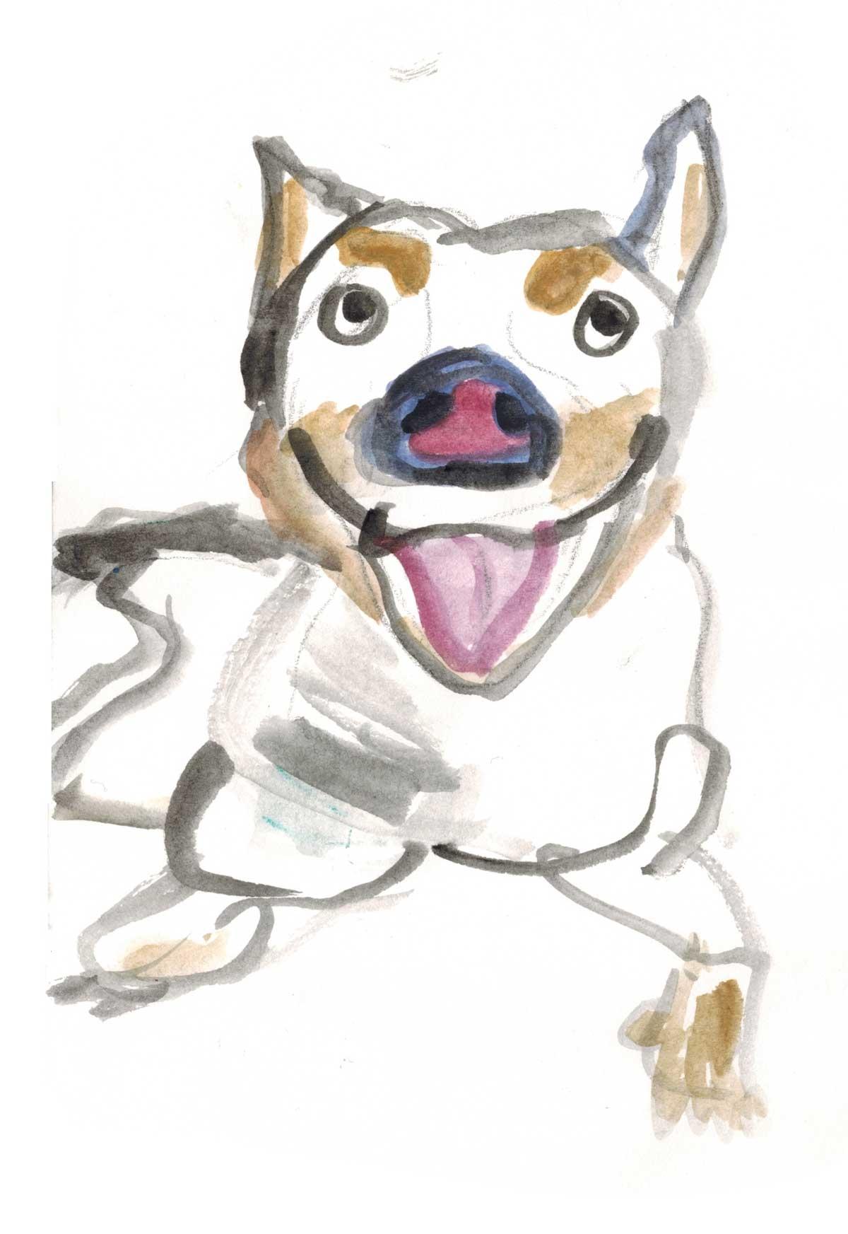 CB-Dog-Art