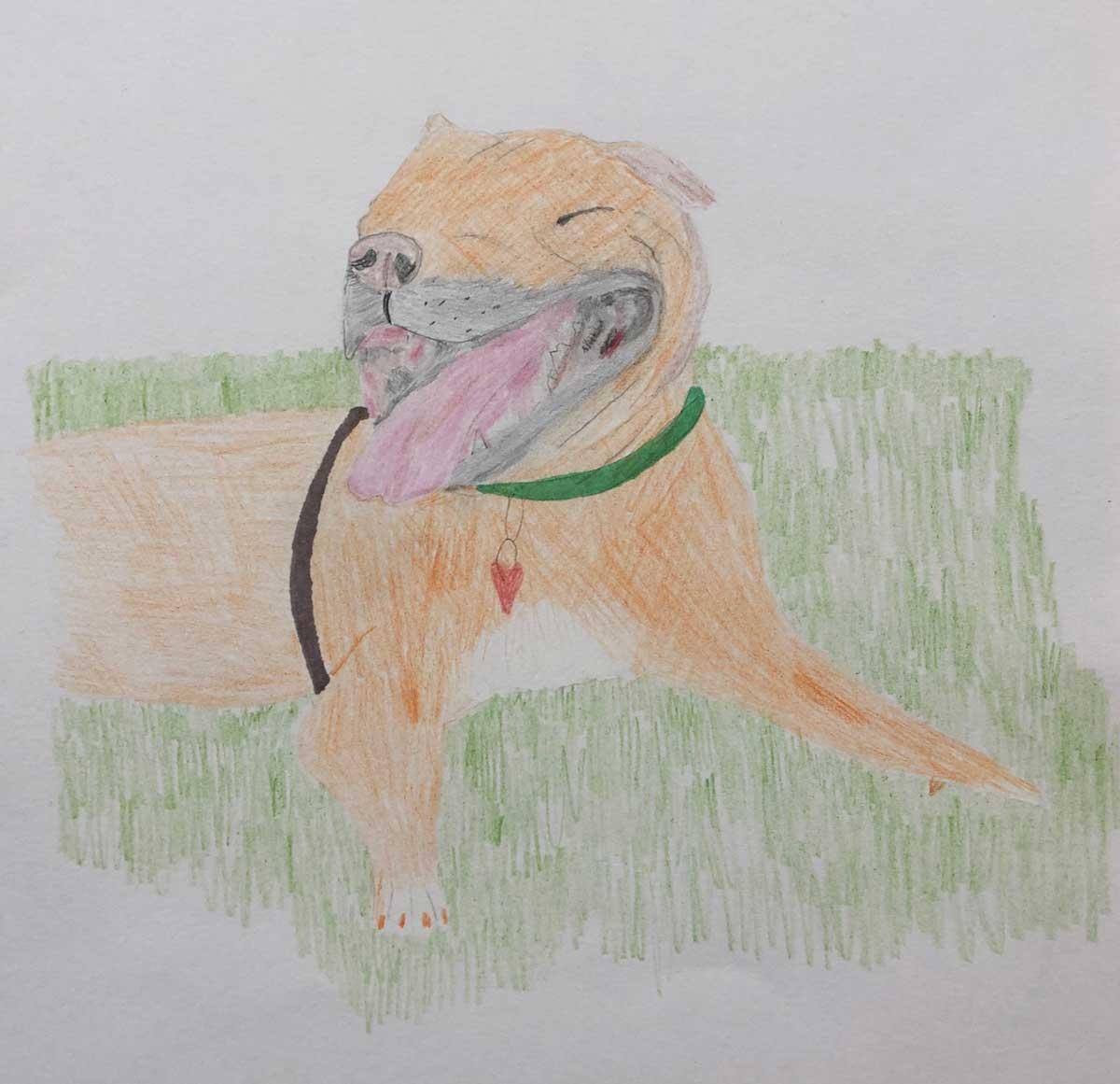CD-Dog-Art