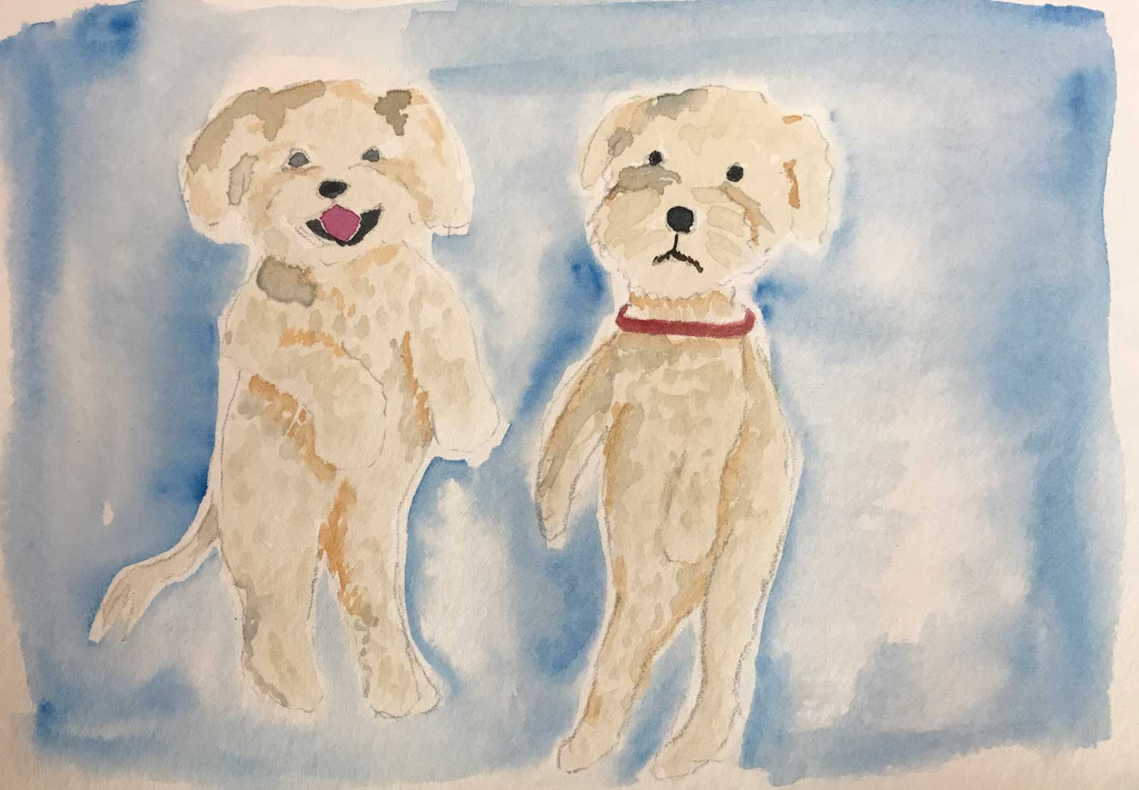 DH-2-Dogs-Art