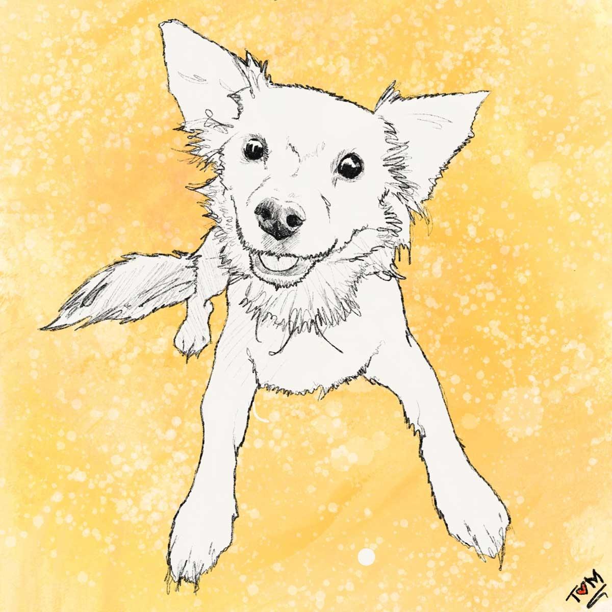 JO-Dog-Art