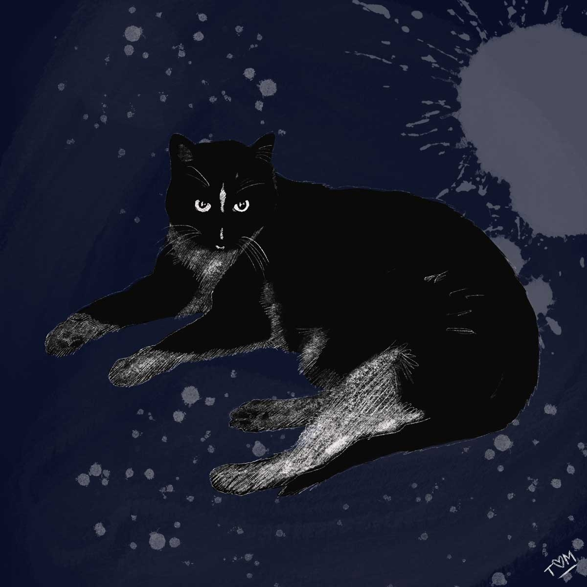 JR-Cat2-Art