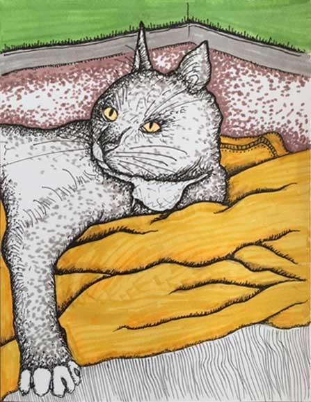 KS-Cat2-Art