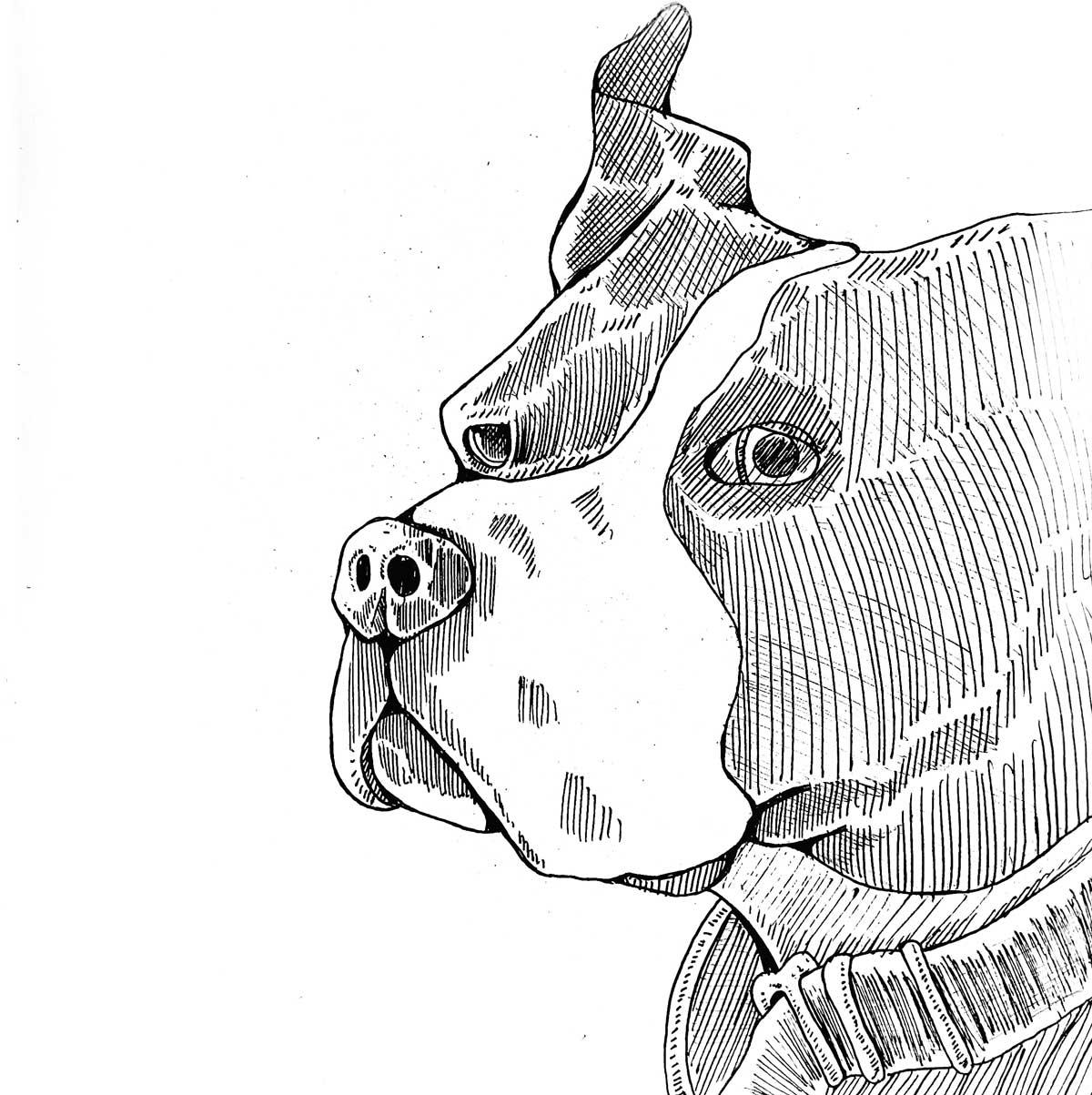 LK-Dog-Art