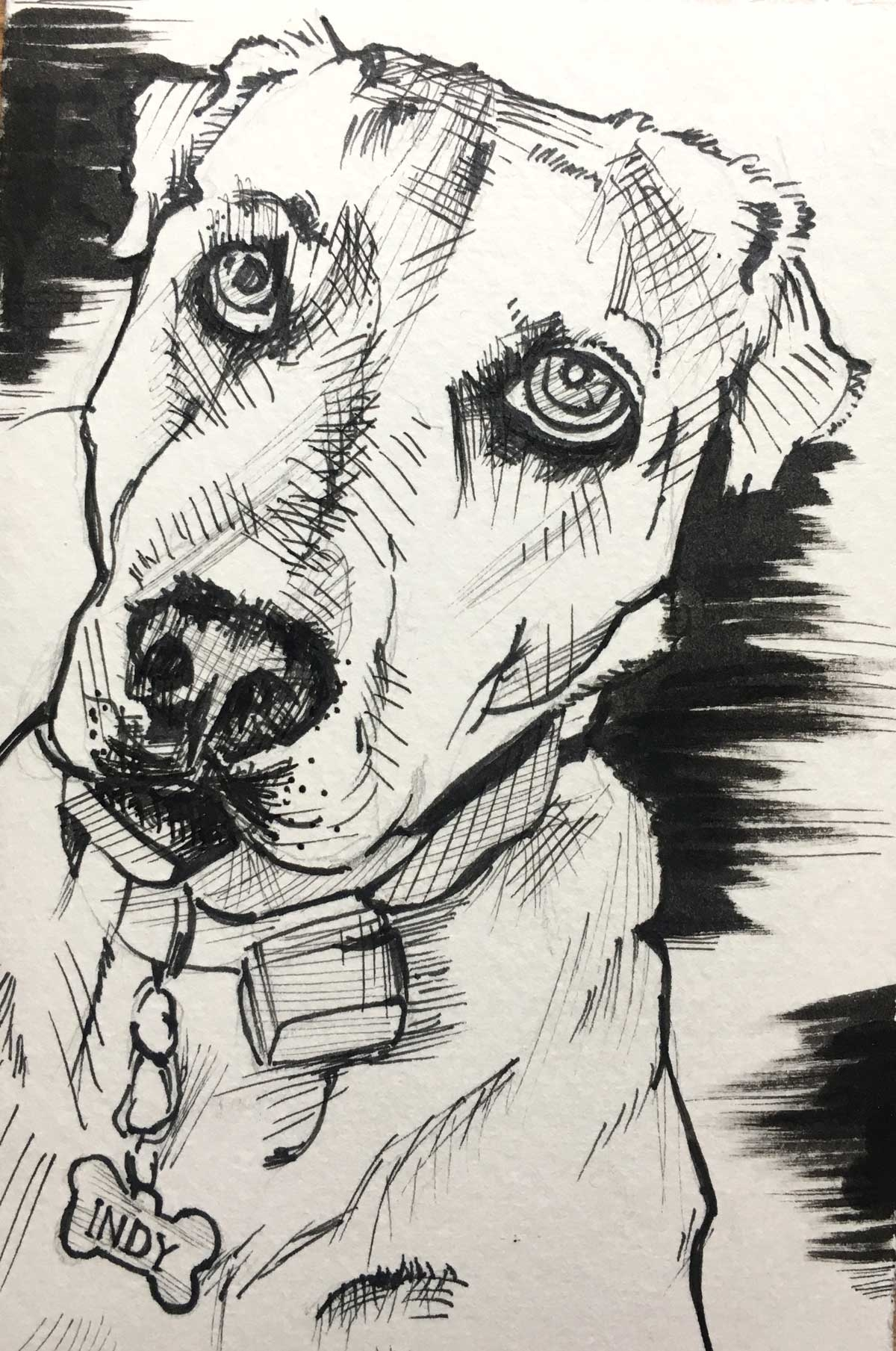 LL-Dog-Art