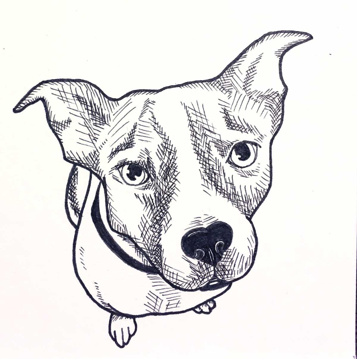 MM-Dog1-Art