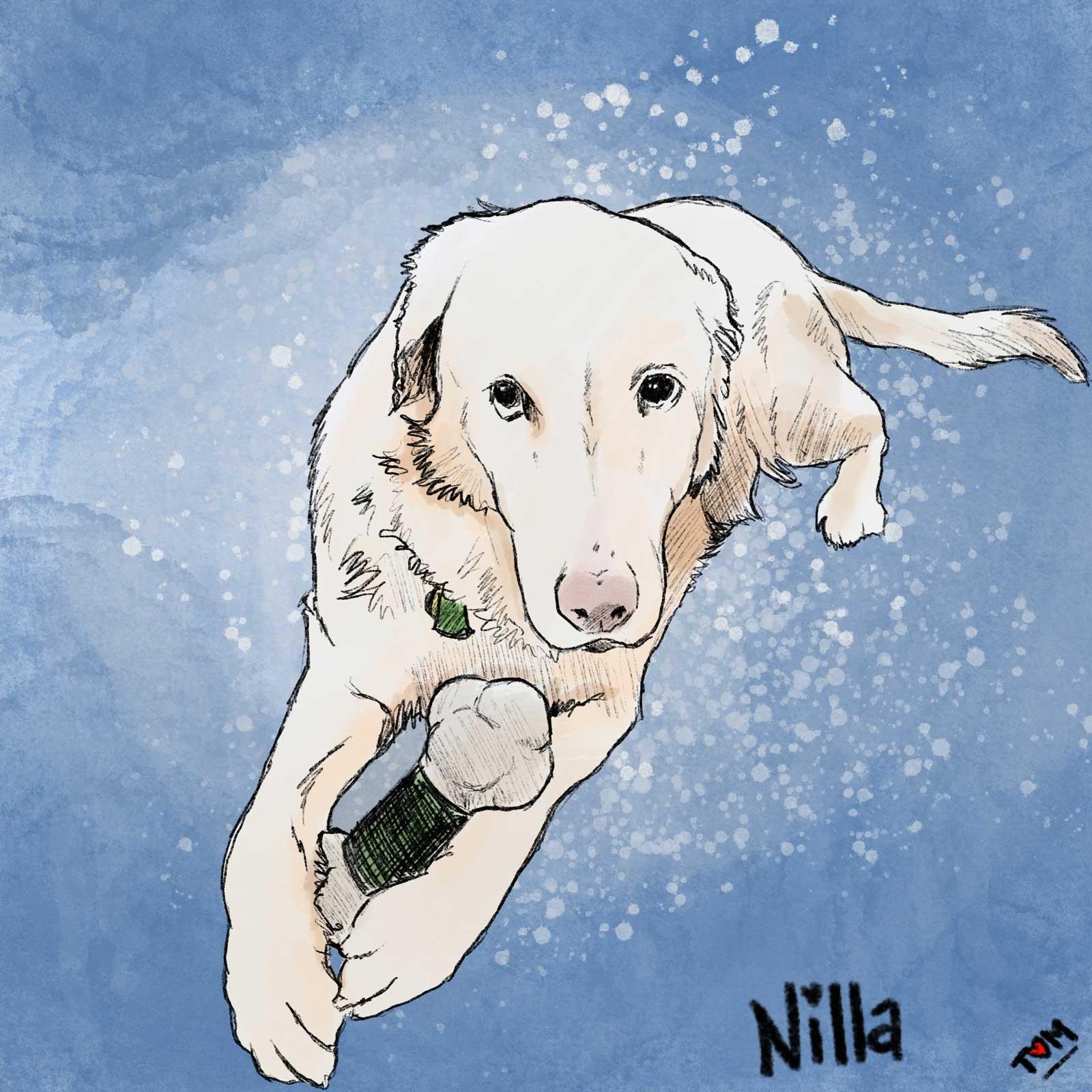 Nilla-Art