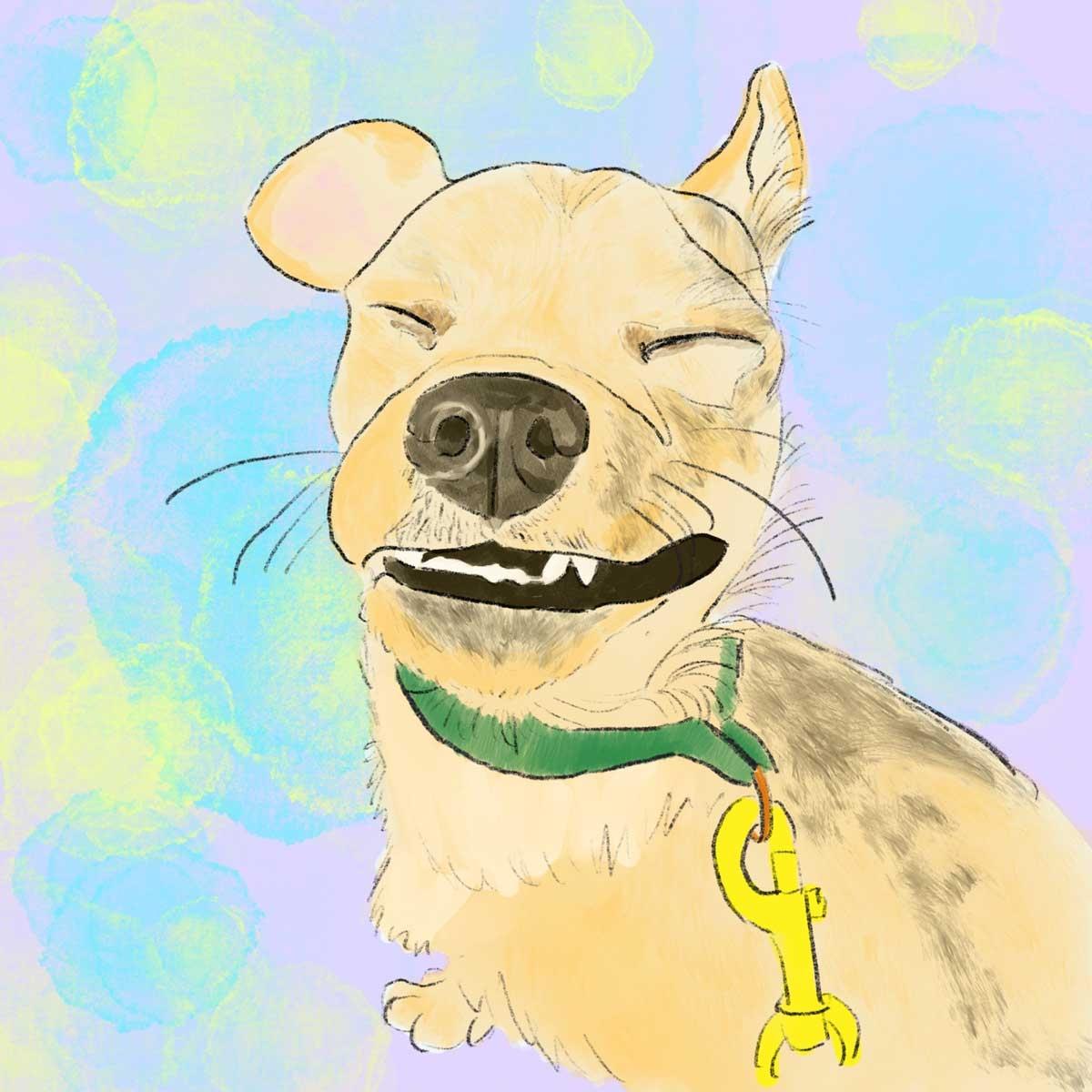 SD-Dog-Art