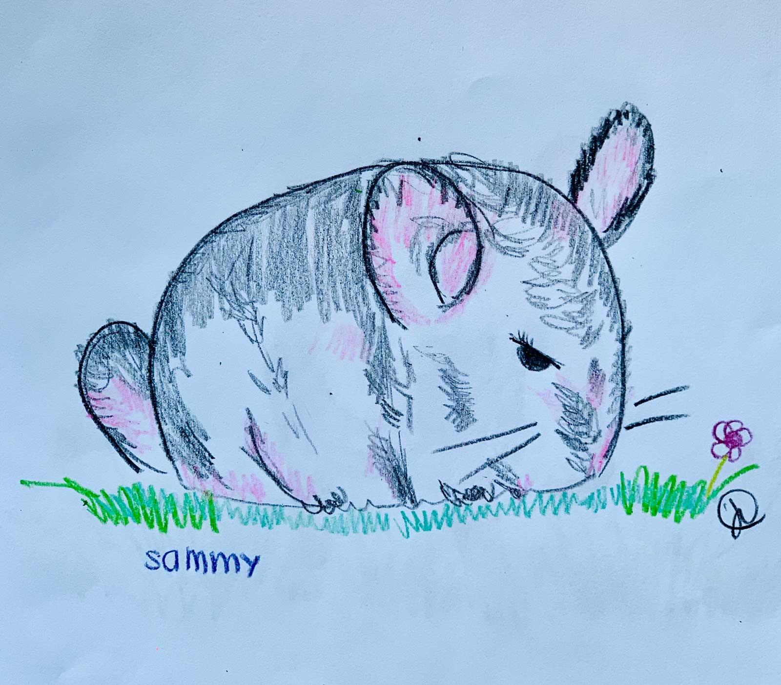 Sammy-Art