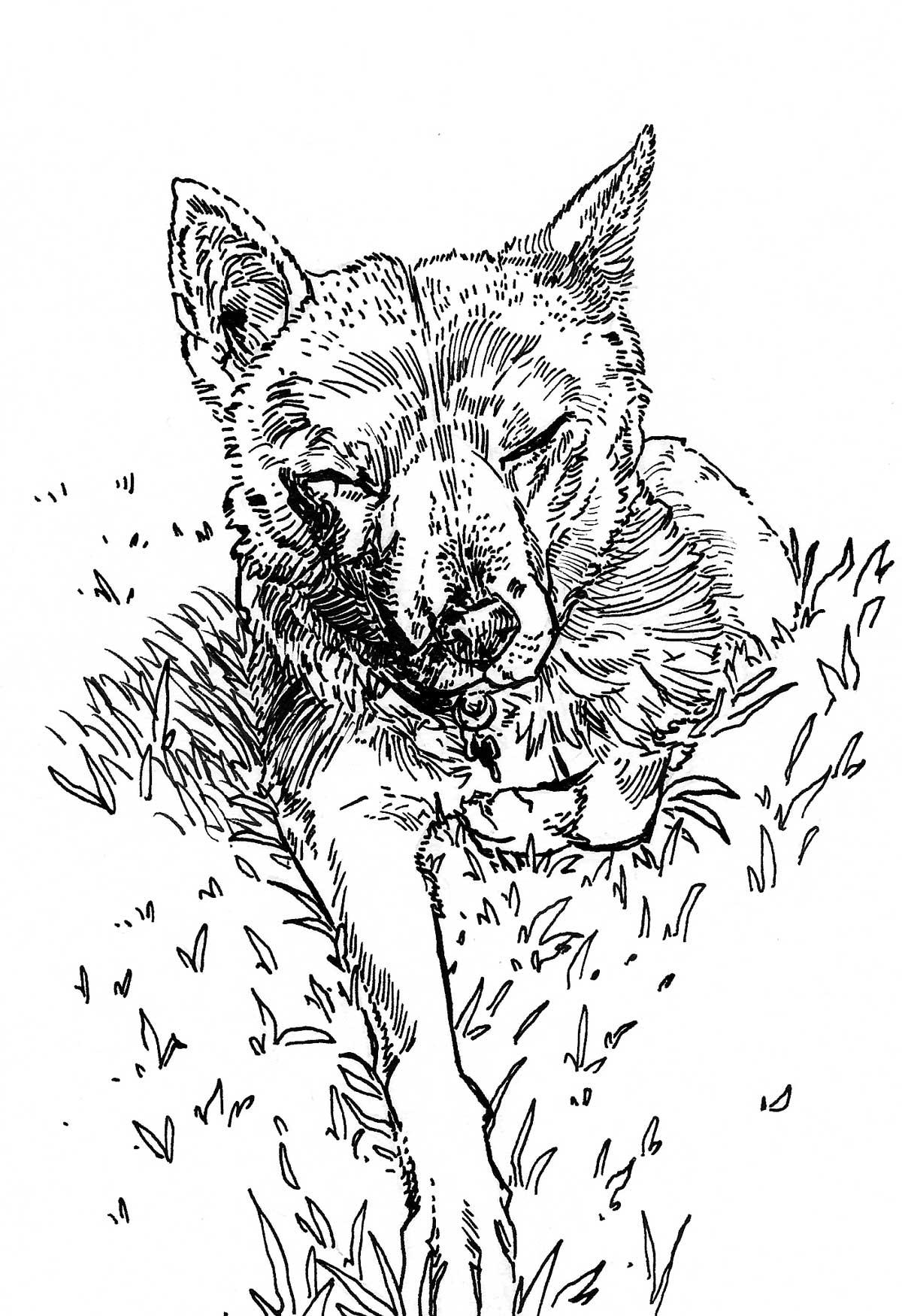 Sleepy-Dog-Art