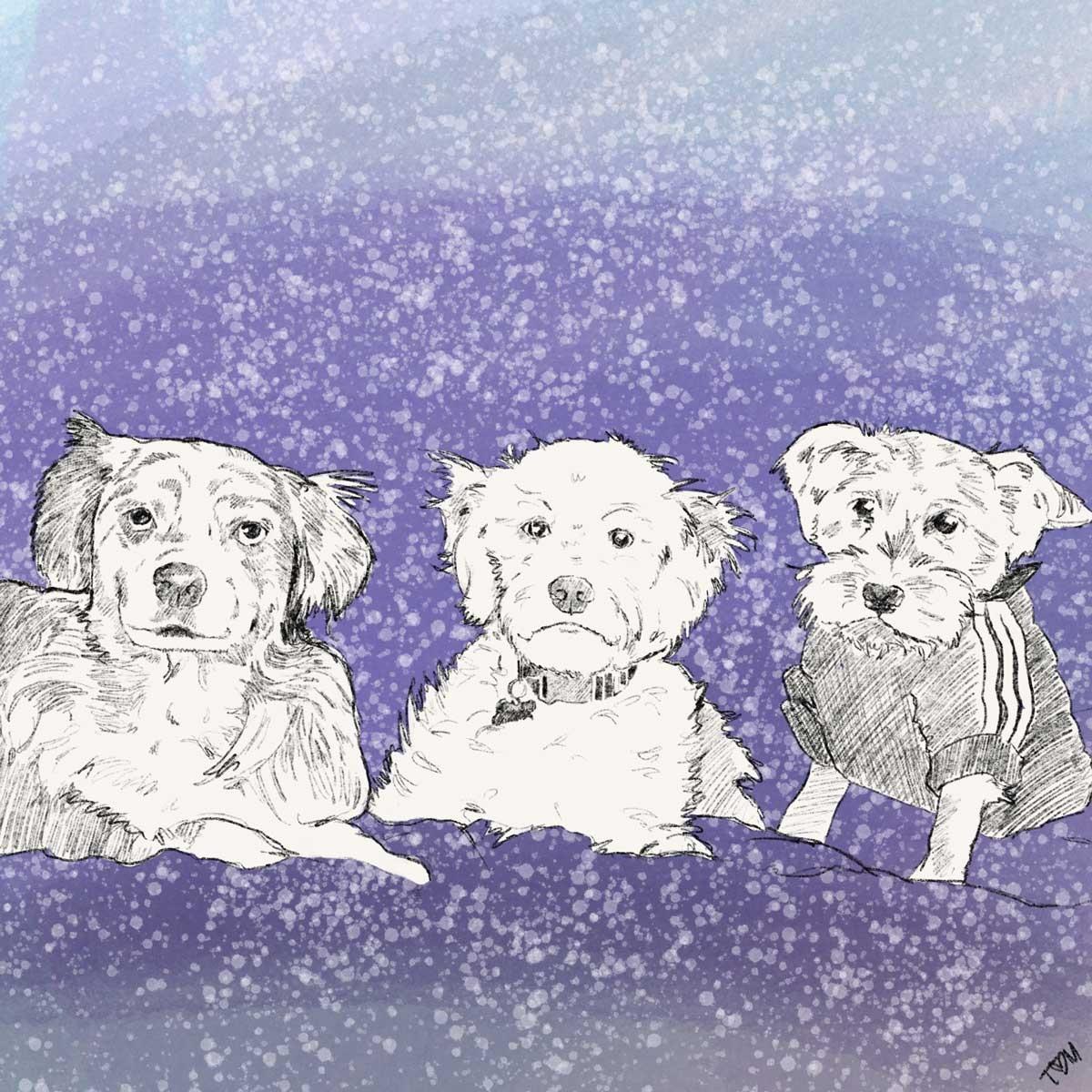 TC-3-Dogs-Art